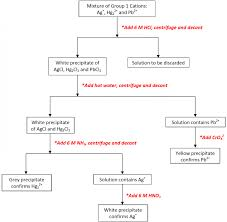 Organic Qualitative Analysis Flow Chart Results And Discussion 39216469606 Flow Chart To