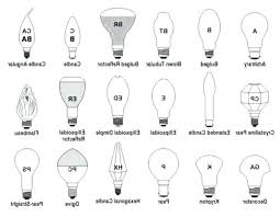 Light Bulb Shape And Size Chart Regular Light Bulb Size Suenoslergray Com
