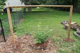 how to build a wire trellis for gs