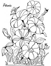 Small Picture 291 best Flower Coloring Pages images on Pinterest Coloring