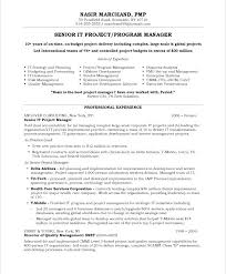 Resume Example Project Manager It Project Manager Free Resume
