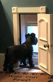 doggie door locks the door a doggy door this way you can still have sliding patio doors and lock the doggy door if you need to dog door sliding glass door