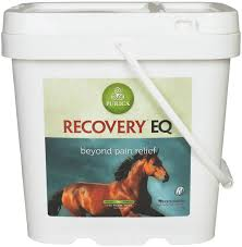 Recovery Eq Joint Supplement For Horses Purica Powdered
