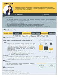 Visual Resume Template Visual Resume Samples Visual Cv Visual Curriculum  Vitae Format Ideas