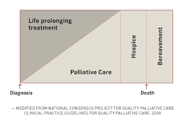 Insight And Information Are Key To Implementing Palliative Care