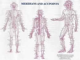 Acupuncture Needle Placement Chart Pngline