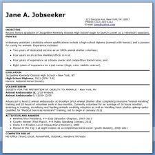 Free Resumes Database Additional Skills Resume Resume Skill Samples