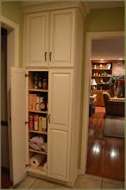 Kitchen Corner Pantry Cabinet Stand Alone Pantry Cupboard Best Home Furniture Decoration
