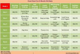 Baby Food Chart After 8 Months Which Food Can Be Given For 8 Months Baby A Sample Food
