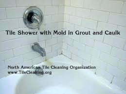 best way to shower how to clean shower best way to clean shower tile remove mold best way to shower