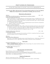 ceo resume template example of a essay