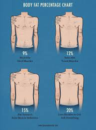 Body Fat Men Chart The Skinny Guys Guide To Body Fat Percentage Bony To Beastly