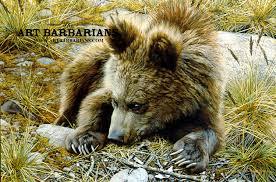 bearly awake grizzly bear cub by carl brenders