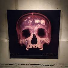 Images Tagged With Mementomori On Instagram