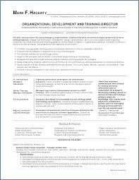 perfect resume az professional resume template perfect marketing templates for