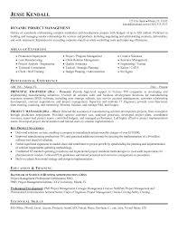 Program Manager Resume Objective Resume For Study