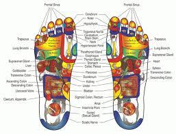 Eunice Ingham Reflexology Chart Bwc Reflexology