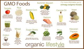 organic and whole foods com organic and whole foods