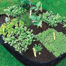grow tub raised garden