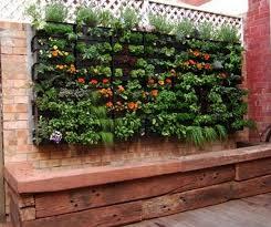 container garden vegetables. Vertical Balcony Vegetable Garden Ideas Container Vegetables A