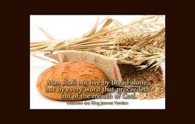 Image result for Book of matthew  4:23