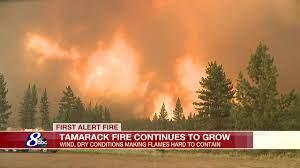 Tamarack Fire Near Markleeville Grows