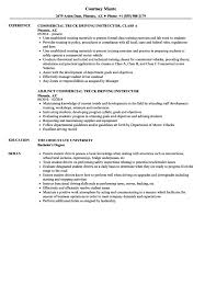 Driving Instructor Resume Examples Assistant Teacher Education