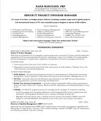 Project Manager Resume Samples Beauteous Project Manager Resume Sample Outathyme