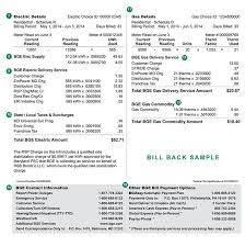 Sample Image Of The Back Of A Monthly Bge Bill Sample Bills