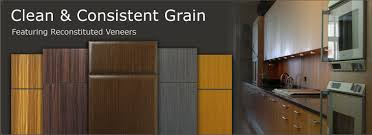Small Picture Contemporary Slab Cabinet Doors WalzCraft