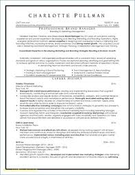Professional Resume Writing Services Cool Resume Writing Services Nyc Inspirational Professional Resume