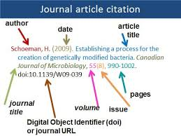 Journal Article Journal Article With One Author Apa Citation Style Research
