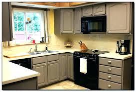 kitchen cabinet color ideas sgering colors paint captivating best 2017 colour 20