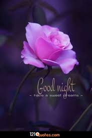 170 Beautiful Good Night Images Best Collection 121