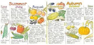 Uk Seasonal Fruit And Vegetable Chart The Vegan Society