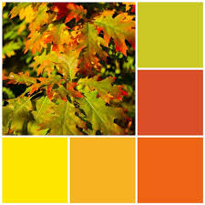 Fall Leaf Color Chart 12 Fall Color Palettes For Your Kitchen Sheknows