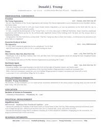 political campaign manager resume captivating political science resumes on resume analyste internship