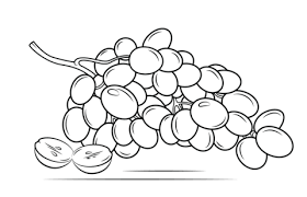 Grapes Coloring Pages For Raisins Color Luna Within