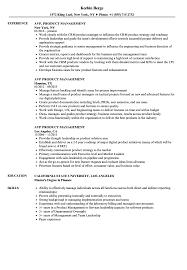 Avp Product Management Resume Samples Velvet Jobs