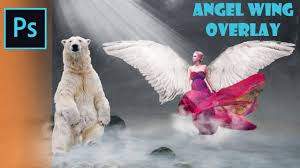 Photoshop Overlays Tutorial Angel Wings Overlay Overlays Png Fairy