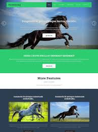 template horse horse racing web template horse racing website templates