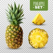 <b>Pineapple Leaves</b> Images | Free Vectors, Stock Photos & PSD