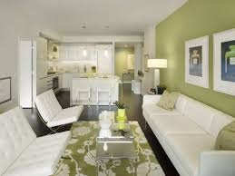 a green living room in small condo