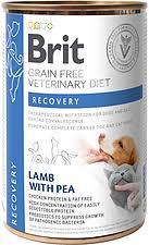 <b>Brit vet diet cat</b>   Comida para gatos   Pet Shop Portugal