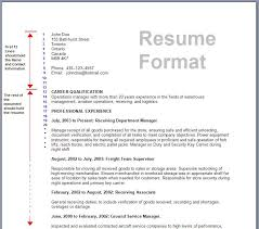 show me an example of a job resume resume template for job