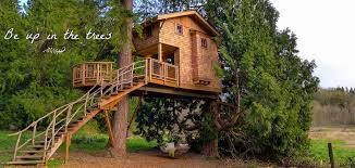treehouse masters spa. Contemporary Spa Treehouse Masters Spa Image Photo Gallery Next  To