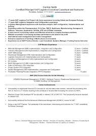 Sap Fico Resume Sample Best of Sap Sd Resume Pdf Sap Sd Consultant Sample Resume Sap Sd Resume