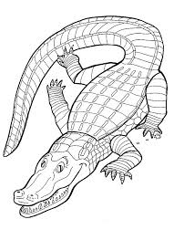 Small Picture Kids n funcom 9 coloring pages of Crocodiles