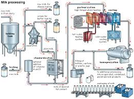 Milk Processing Flow Chart Marcus Technology