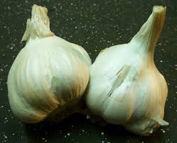 how to make and use garlic water pesticide for plants
